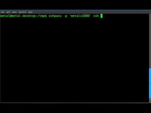 Another way to login to ssh with a script