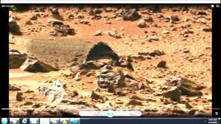 "Mars has Life!  Where to find a Cylindrical structure and possible living ""thing"" on Mars"