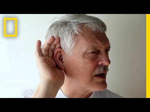 Take the High-Frequency Hearing Test | Brain Games