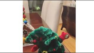 Demi's Laugh awww 💖💖💖 (Demi Lovato Funny Dancing Christmas tree Instagram stories 13/12/2018)