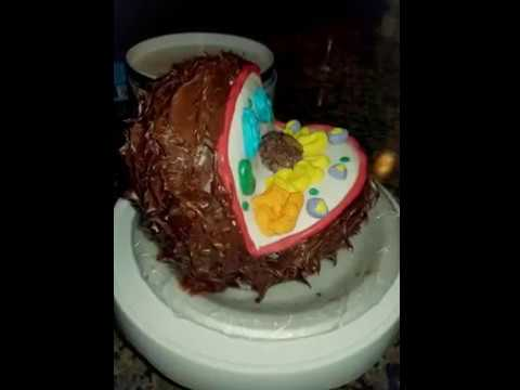 6th Grade Science Project: Animal Cell Cake