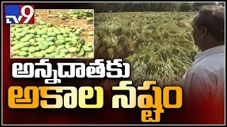 Farmers incur heavy losses due to rains in Telangana - TV9