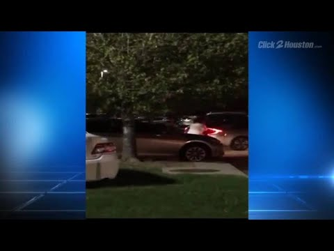 Fight over parking spot at Houston shopping center caught on video