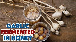 🔵 How To Make Garlic Fermented In Honey Recipe