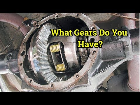 4th Gen Fbody Gear Ratio - GM RPO Codes - How To Find Your Gear Ratio