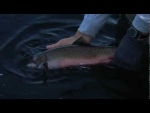 Trolling for trophy Brook Trout, Marmac Lodge, Esnagi Lake, ON Part 3 of 4