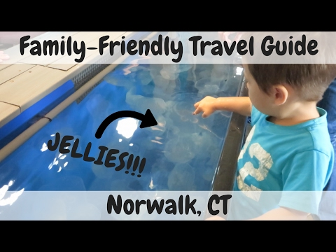 Norwalk Family Getaway from NYC