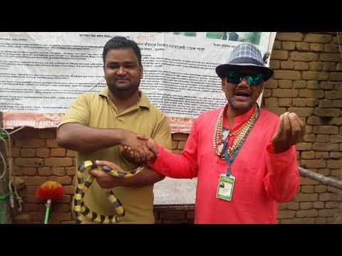 Venomous Banded kriat Awareness Program Snake rescue team Panchet dam (N G O)