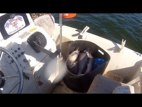 Catfish Trot Line, Full Video, Go Pro