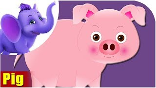 Animal Songs for kids | Pig Song