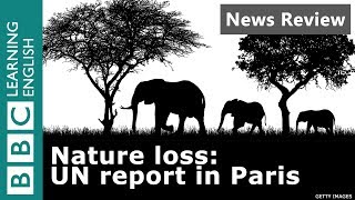 Nature Loss: UN Report in Paris - BBC News Review