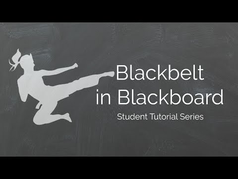 View Grade Feedback in Blackboard