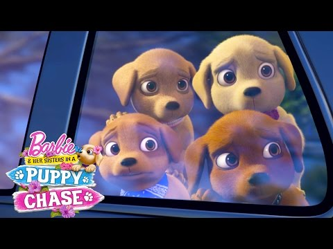 The Puppies Are Missing!   Barbie & Her Sisters in a Puppy Chase   Barbie