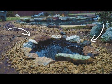 DIY Mini Pond Live Well!