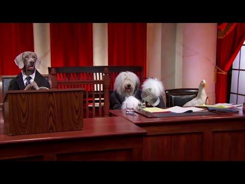 Horne v. Department of Agriculture: Oral Argument - March 20, 2013