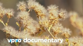 Seed battles - The Doomsday vault - (VPRO documentary - 2013)