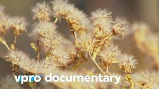 Seeds battles - The Doomsday vault - VPRO documentary - 2013
