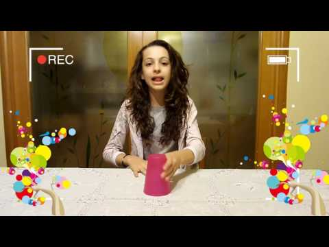 Shape Of You - Cup Song - Alessia Chianese