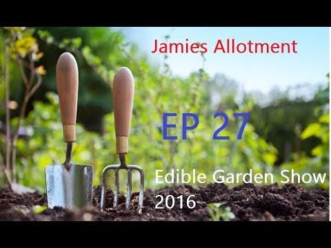 Jamies Allotment | Indoor & Greenhouse Update | Edible Garden Show 2016