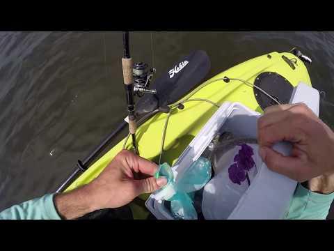 Spring River Fishing for Fluke and a Kidney