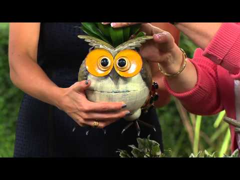 Plow & Hearth Set of 2 Weather Resistant Owl Planters
