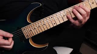 Seymour Duncan Nazgul and Sentient 7 String (Unboxing) - PakVim net