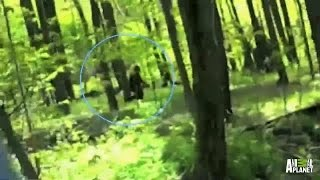 Best of Bigfootage   Finding Bigfoot