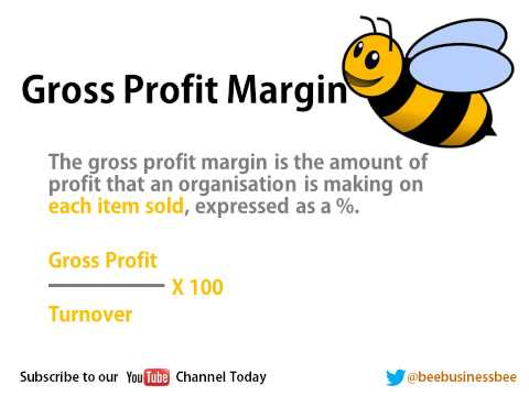 Bee Business Bee Measuring and Increasing Profit Presentation