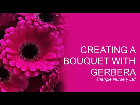 Triangle Nursery - Creating a bouquet with Gerbera