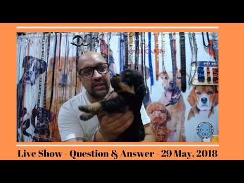 Live Show - Question & Answer - 29 May, 2018