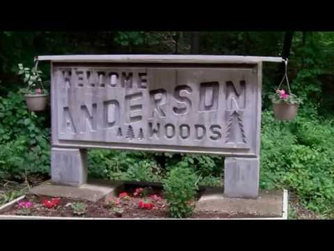 Anderson Woods 009 'Something New'