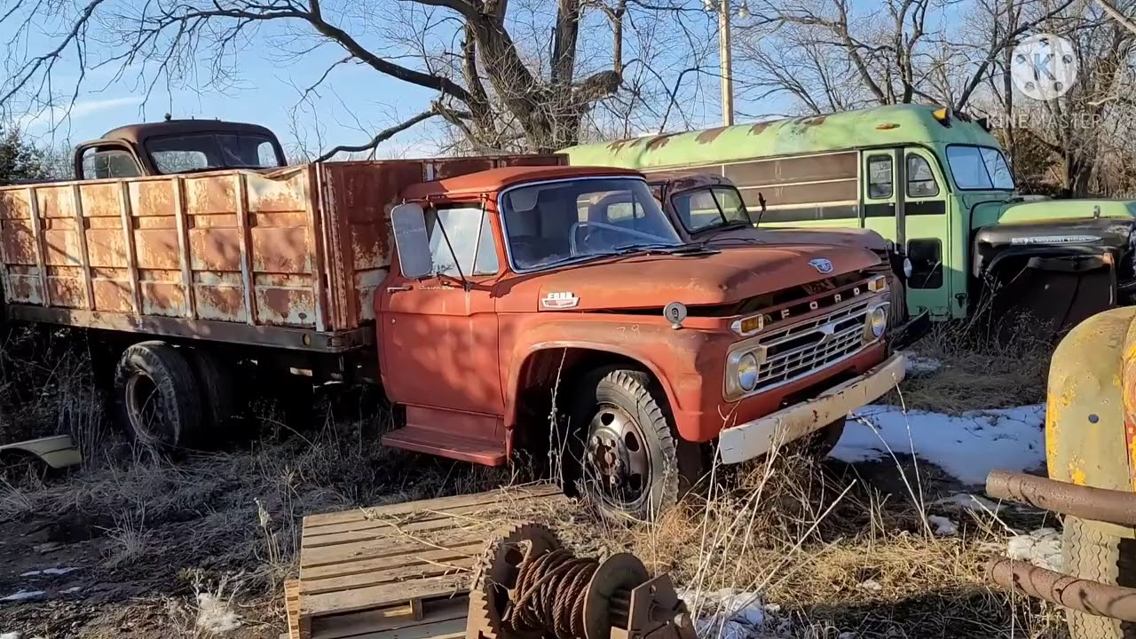 Rust Ranch new arrivals! Oldsmobile, Thunderbird, Studebaker, Ford, Chevy and GMC trucks + cars!!!