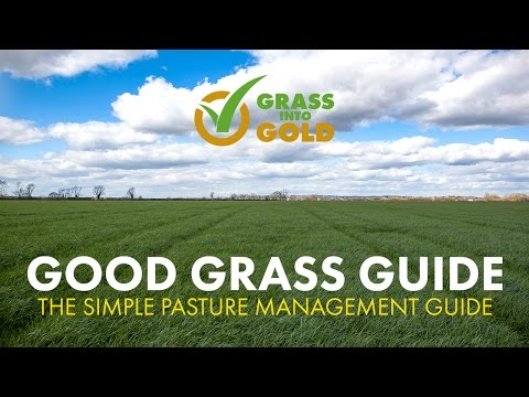 Barenbrug Good Grass Guide - How to Score Your Fields for Maximum Profitability