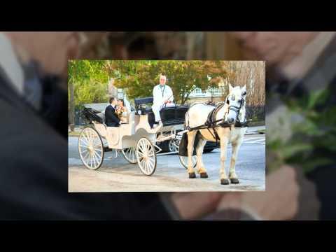 Wedding of Chris and Melissa in Charleston, SC