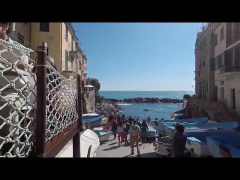 Day Trip to Cinque Terre & Pisa