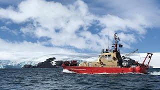 """قاعدة إسكوديرو العلمية في أنتاركتيكا: بحوث """"قطبية"""" في مجال الطب والبيئة…"""