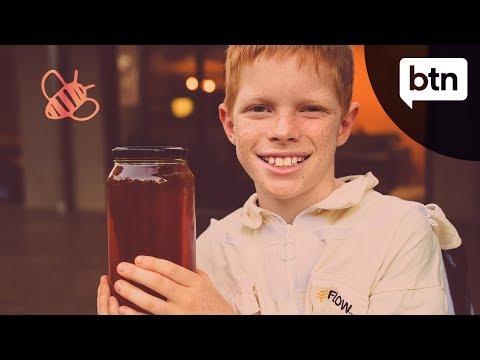 Finn's Bee Business - Behind the News