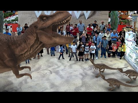Big-screen Augmented Reality experience for Museums, Zoos, Malls and more
