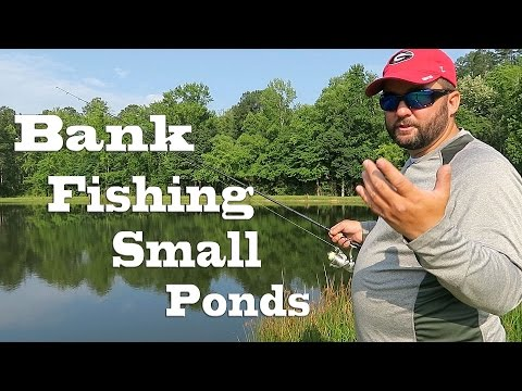 Bank Fishing - How to Fish Small Ponds in the Summer