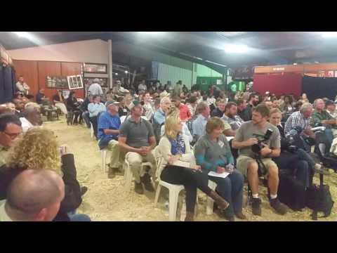 Royal Show Carcass Auction 2016 (Champion Lamb)
