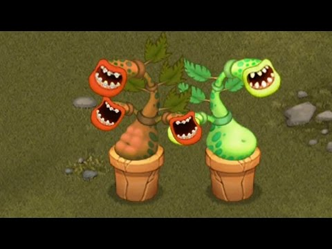 How to Breed Rare Potbelly Monster 100% Real in My Singing Monsters! [Shugabush ISLAND]