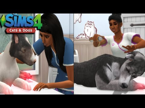 THE SIMS 4   CATS & DOGS - EPISODE 2   CURING SICK PETS