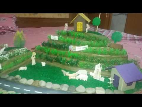 Model of step farming in hills
