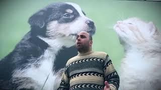 Murat Akay - Can Dostlarımız (sokak Hayvanları)