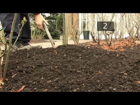 How To Apply Leaf Mould