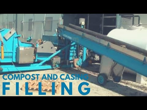 Mushroom Machinery - Productive Filling of Compost and Casing