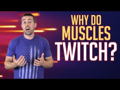 Why Do Muscles Twitch?