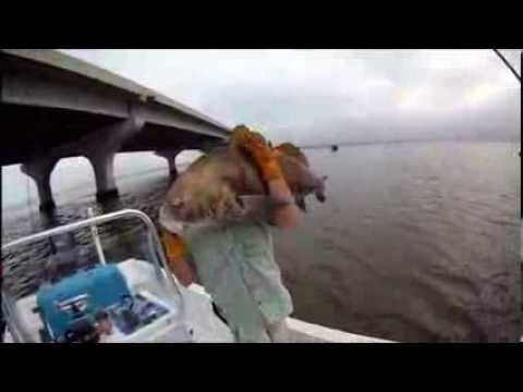 Fall Drum Fishing in Beaufort S.C with  Beaufort Cast Away Charters