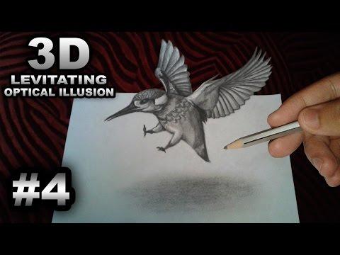 Trick Art - 3D Flying Bird - Levitating Anamorphic Optical Illusion