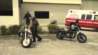Bobby Elvis Effin Bike